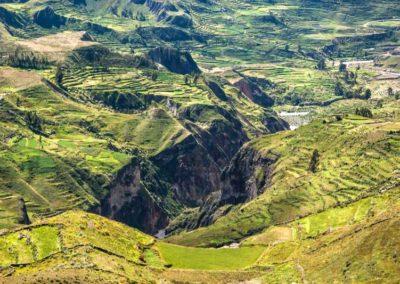 Canyon del Colca