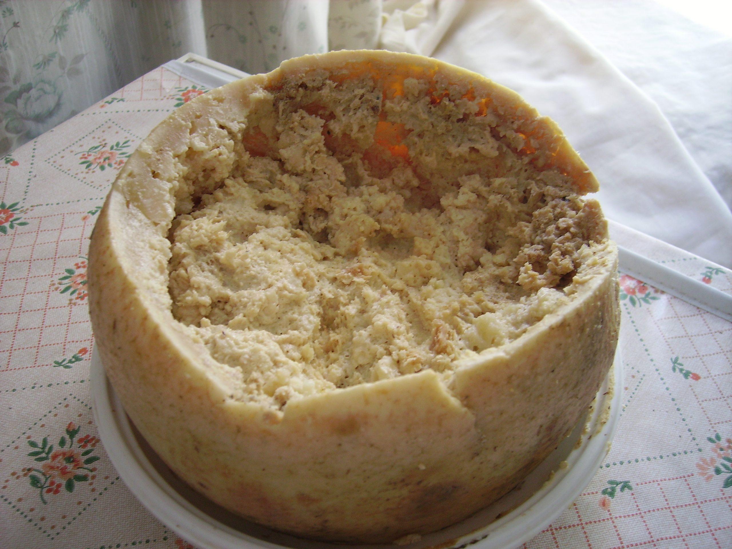 Il formaggio con i vermi, in Sardegna