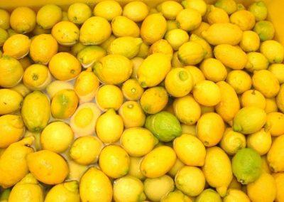 limoni -Sorrento